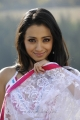 Trisha in White Transparent Saree Stills