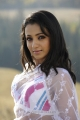 Trisha White Saree Hot Pictures