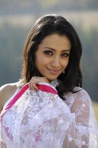 Trisha Krishnan Hot in Saree in Bodyguard