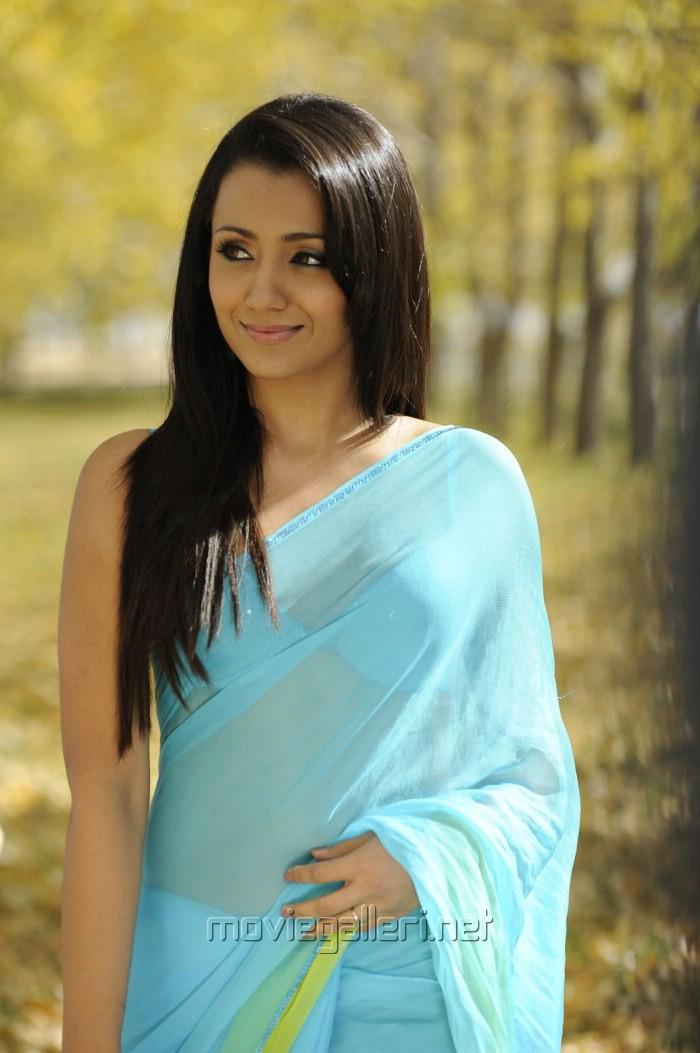 But Trisha krishnan saree