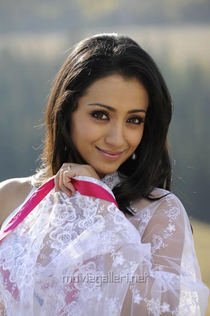 Not absolutely Trisha krishnan saree remarkable