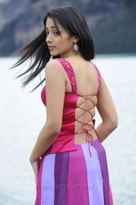 Tamil Actress Trisha Krishnan Hot Latest Photo Gallery