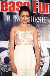 Actress Trisha Krishnan New Pics @ Mohini Pre Release Event