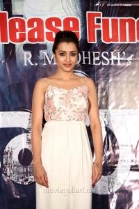 Actress Trisha New Pics @ Mohini Pre Release Event