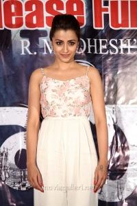 Actress Trisha Krishnan Pics @ Mohini Movie Pre Release