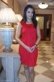 Trisha Latest Cute Photos, Trisha New Cute Pics