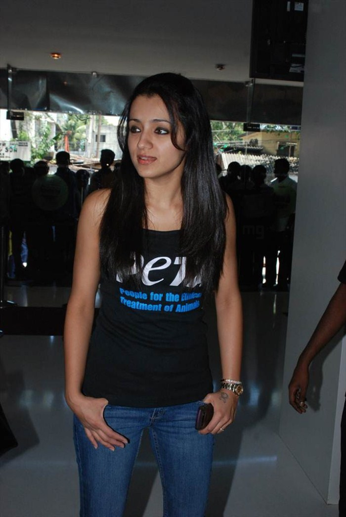 Trisha Latest Cute Smile Stills Photos Pics
