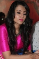 Actress Trisha at Nayagi Movie Launch Photos