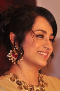 Actress Trisha Krishnan Images at Nayaki Movie Press Meet