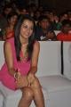 Tamil Actress Trisha in Pink Skirt Hot Images