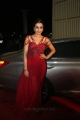 Actress Trisha Photos @ SIIMA Awards 2019 Day 2