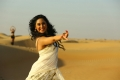 Heroine Miya George in Ungarala Rambabu Movie HD Images
