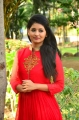 Actress Reshmi Menon @ Urumeen Movie Press Meet Stills