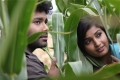 Usuru Movie Stills