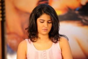 Deeksha Seth at Uu Kodathara Ulikki Padathara Success Meet Stills