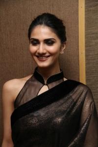Vaani Kapoor Interview about Aaha Kalyanam Photos