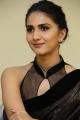 Vaani Kapoor Interview Photos about Aaha Kalyanam