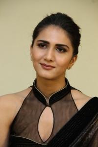Aaha Kalyanam Heroine Vaani Kapoor Interview Photos