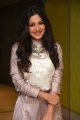 Vadaladu Movie Actress Catherine Tresa Interview Photos