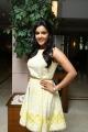 Priya Anand @ Vai Raja Vai Movie Team Meet Stills