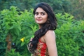 Actress Vaibhavi Shandilya Images HD @ IAMK Movie Press Meet