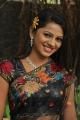 Tamil Actress Vaidehi Hot Photos in Black Saree