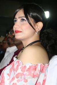 Actress Komal Sharma @ Vaigai Express Trailer Launch Photos