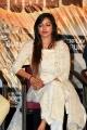 Actress Vaibhavi Joshi @ Vajra Kavachadhara Govinda Pre Release Event Photos