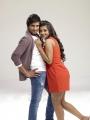 Santhanam, Ashna Zaveri in Vallavanukku Pullum Aayudham Movie Stills