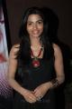 Dhanshika at Vallinam First Look Launch Press Meet Stills