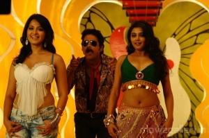 Anushka Nagarjuna Priyamani Hot Vambu Movie Stills
