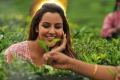 Actress Priya Anand in Vanakkam Chennai Movie Stills