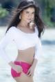 Actress Gehana Vasisth Spicy Hot Photo Shoot Images