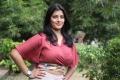 Actress Varalakshmi Sarathkumar Latest Hot Images @ Sathya Success Meet