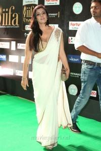 Actress Varalakshmi Saree Hot Photos at IIFA Utsavam 2017 (Day 1)