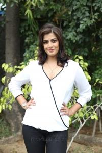 Actress Varalakshmi Latest Photos @ Vikram Vedha Press Meet