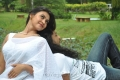 Sathya Sai Movie Actress Varsha K Pandey Hot Stills