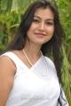 Sathya Sai Tamil Movie Actress Varsha K Pandey Hot Stills