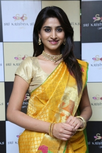 Actress Varshini Sounderajan in Silk Saree Photos