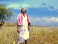 Sathyaraj in Varutha Padatha Valibar Sangam Audio Release Invitation Wallpapers
