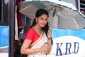Actress Bindu Madhavi in Varutha Padatha Valibar Sangam Movie Stills
