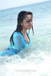 Actress Ritu Barmecha Hot in Vasool Raja Latest Stills