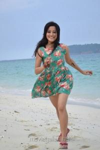 Actress Ritu Barmecha in Vasool Raja Latest Stills