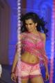 Vasool Raja Telugu Movie Item Girl Hot Stills