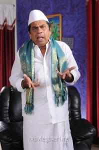 Brahmanandam's Politician getup for Vasul Raja Telugu Movie Stills