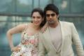 Tamanna, Arya in Vasuvum Saravananum Onna Padichavanga (VSOP) Movie Latest Photos