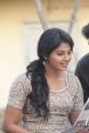 Actress Anjali Latest Cute Photos from Vathikuchi Movie