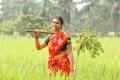 Actress Vasundhara Kashyap in Vazhga Vivasayi Movie Stills