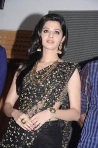 Actress Vedika in Black Saree @ Kaaviya Thalaivan Audio Release