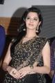 Actress Vedhika Black Saree Photos @ Kaaviya Thalaivan Audio Release